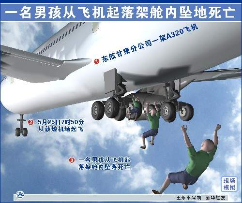 一名男孩从飞机起落架舱内坠地死亡.新华社发