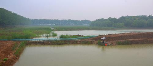 云龙湖风景区绘画